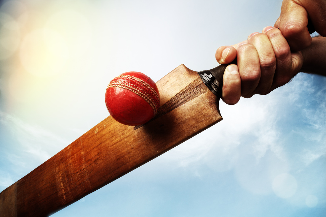 Cricket ball - First Pitch | Pitching Machines | Free US Shipping